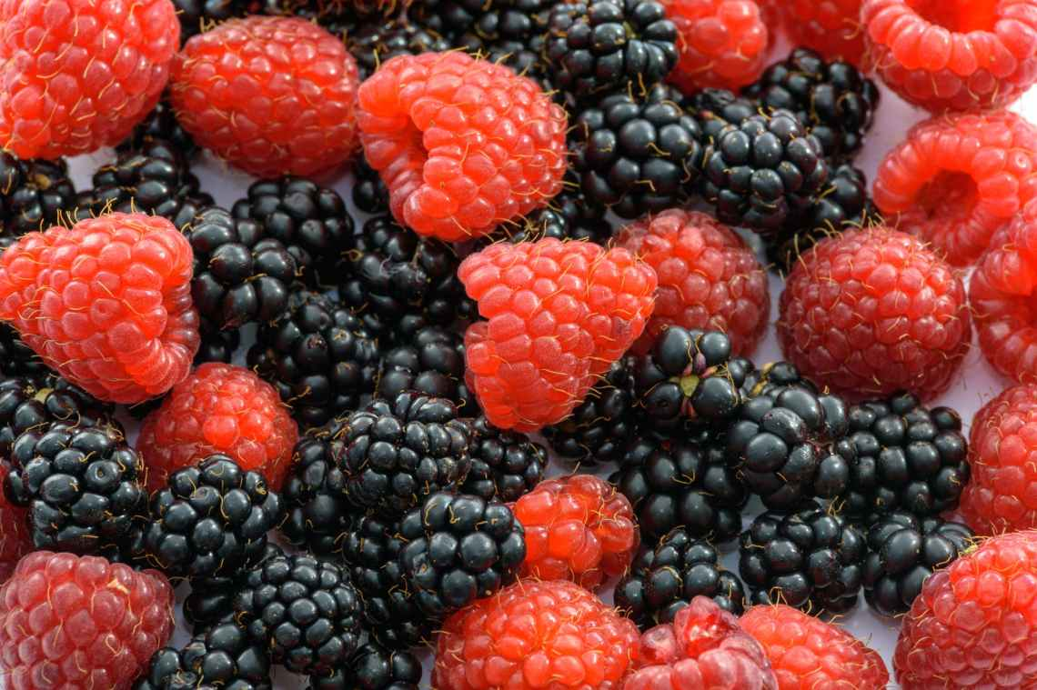 berries berry blackberries blackberry